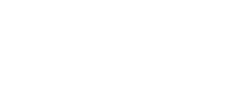 Phelan Insurance Agency, Inc. - Logo 800 White